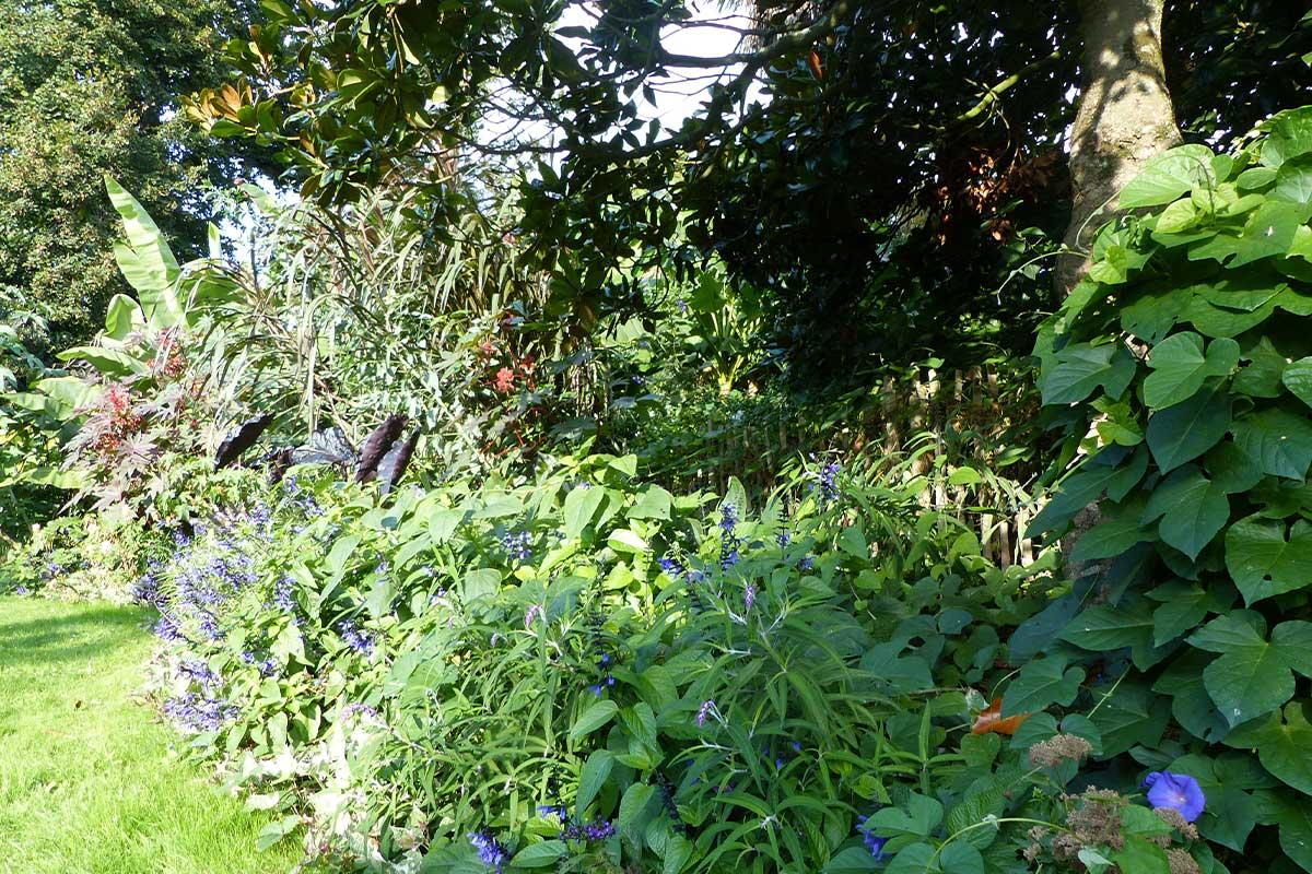 BLANLOEIL ENVIRONNEMENT Entretien Jardin Carquefou Accueil